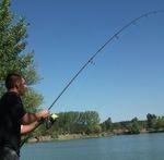 Energofish-PecaPláza a Bázis horgásztavon