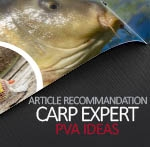 CARP EXPERT PVA IDEAS