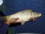 Pescuit practic în sezonul eXtrem