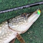 Az UL horgászat örömei